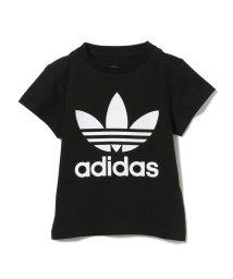 こどもビームス/adidas / オリジナルス トレフォイル ロゴ プリント Tシャツ 20 (110~130cm)/503043128