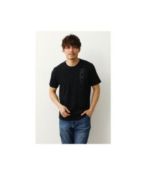 RODEO CROWNS WIDE BOWL/スタンディングロゴTシャツ/503117125