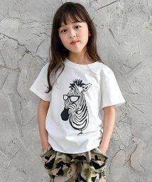 子供服Bee/半袖プリントTシャツ/503124783