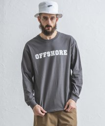 OFF SHORE/COLLEGE LOGO L/S TEE/503088800
