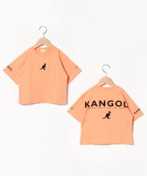 b-ROOM/【KANGOLコラボ】 ロゴ刺しゅうバックプリントビッグシルエットTシャツ/503115533