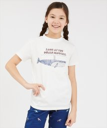 KRIFF MAYER(Kids)/ウェットプロテクト半袖T(クジラ)(130~160cm)/503117514