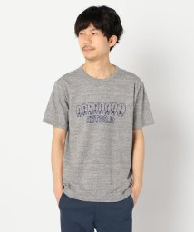 GLOSTER/【LOOP WHEEL】吊り編みプリントTシャツ/503120238