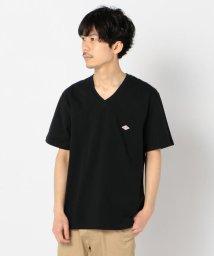 GLOSTER/【DANTON/ダントン】VネックTシャツ #JD-9213/503120239