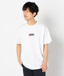 GLOSTER/【newhattan / ニューハッタン】オープンエンドTシャツ 半袖 H0002-326/503120242