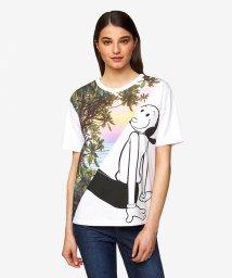 BENETTON (women)/【Popeyeコラボ】オリーブアートTシャツ・カットソー/503121812