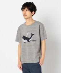 GLOSTER/吊り編み クジラプリントTシャツ/503131623