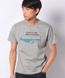 KRIFF MAYER/ウェットプロテクト半袖T(クジラ)/503117496