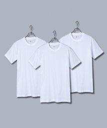 Rocky Monroe/Hanes ヘインズ Tシャツ メンズ 半袖 クルーネック Vネック HM2135G HM2145K 綿 コットン 3枚組 アカラベル セット 赤 パックTシャ/503136808