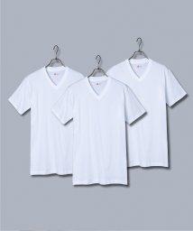 Rocky Monroe/Hanes ヘインズ パックTシャツ メンズ 半袖 クルーネック Vネック HM2115G HM2125G 綿 コットン 3枚組 アオラベル セット 青パック /503136809