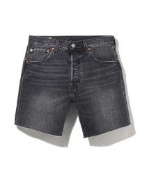 Levi's/SHORTS ANTIPASTO SHORT/503144872