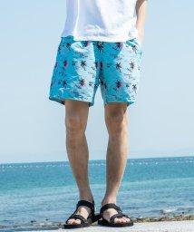 Rocky Monroe/ボードショーツ メンズ 水着 サーフパンツ スイムウェア 水陸両用 ハーフパンツ 海水パンツ 海パン ショート 短パン 海 プール キャンプ アウトドア 釣り /503146972