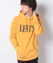 LEVI'S MEN/GRAPHIC PO HOODIE T3 90S LOGO PO GOLDEN/503132234