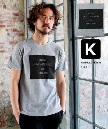 THE CASUAL/(バイヤーズセレクト)Buyer's Select 綿100%プリントTシャツ/503160922