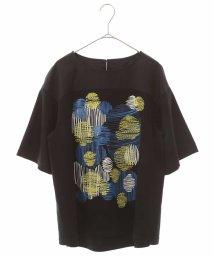 HIROKO BIS/【洗える】デザイン刺繍カットソー/503166393