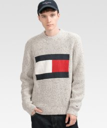 TOMMY JEANS/フラッグニットセーター/503145902