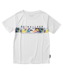 QUIKSILVER/クイックシルバー/キッズ/QP DISTANT FORTUNE SS KIDS/503184989