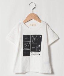 Sot Fairy/アニマルプリントTシャツ/503177455