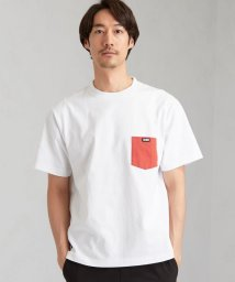 green label relaxing/別注[ チャムス ]SC CHUMS GLR カラー ポケット Tシャツ /503191184