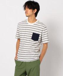 GLOSTER/プレーティングボーダーTシャツ/503191305