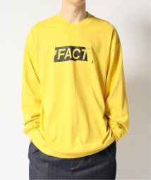 JOINT WORKS/【FACT. / ファクト】 Faded Type L/SL Tee/503198221