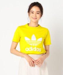 FREDY&GLOSTER/【adidas/アディダス】ロゴTシャツ/503191314
