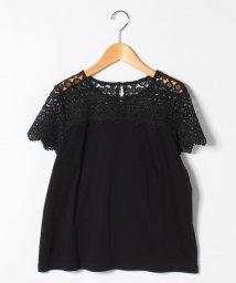 LAPINE BLEUE/【大きいサイズ】【洗える】ケミカルレース切替Tシャツ/503202052