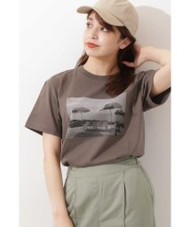 N Natural Beauty Basic/フォトTシャツ/503205886