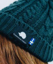 En Fance/【SCANDINAVIAN FOREST】スカンジナビアンフォレスト ケーブルニット帽/503030157