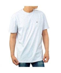 TOMMY HILFIGER/【メンズ】TOMMY HILFIGER DM0DM06061 T-shirt/503198718