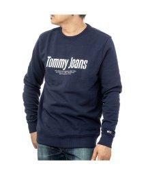TOMMY HILFIGER/TOMMY HILFIGER DM0DM08132 ロングスリーブ/503198723