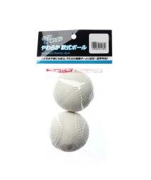 SPORTS DEPO/アルペンセレクト Alpen select 野球 トレーニングボール PB-8BB0025WH H/503234198