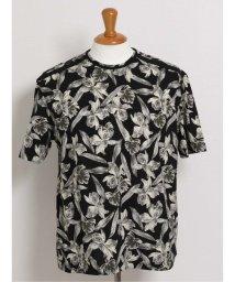 GRAND-BACK/【大きいサイズ】バラシ ミラノ/barassi MILANO リーフ柄クルーネック半袖Tシャツ/503138590