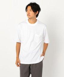 GLOSTER/ニットリブ Tシャツ/503202648