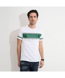 GUESS/ゲス GUESS BANNER LOGO TEE (WHITE AND STRIPE GREEN)/503221627