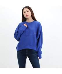 GUESS/ゲス GUESS Back Logo Raglan Sweat (BLUE)/503221848
