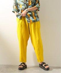 JOURNAL STANDARD/【BLACK CRANE/ブラック・クレーン】CARPENTER PANTS:パンツ/503249972