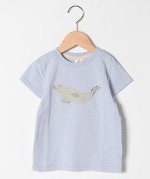 LAGOM/【lagom】【新江ノ島水族館コラボ】海の生き物Tシャツ/503177772