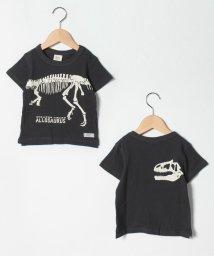 FARM/アロサウスルTシャツ/503093657