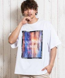CavariA/CavariA【キャバリア】3DオーガンジービッグTシャツ/503275211