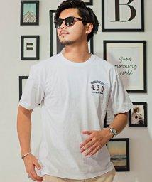CavariA/CavariA【キャバリア】USAコットンクマ刺繍半袖Tシャツ/503279809