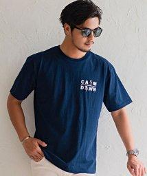CavariA/CavariA【キャバリア】USAコットンワンポイント刺繍半袖Tシャツ/503279810