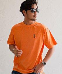 CavariA/CavariA【キャバリア】ピグメントサーフ刺繍Tシャツ/503279823