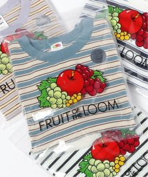 JOURNAL STANDARD relume Men's/【FRUIT OF THE LOOM×relume】別注 ボーダーTシャツ/503281156