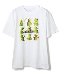 LHP/WHITELAND×KERMIT/ホワイトランド×カーミット/KERMIT9プリントTシャツ/503284002