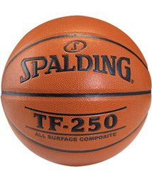 SPALDING/TF-250_JBA_7/503307347