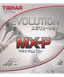 TIBHAR/エボリューション MX-P/BK/1.7/503307734