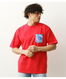 RODEO CROWNS WIDE BOWL/バックAWESOME Tシャツ/503314248