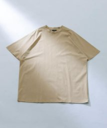 ITEMS URBANRESEARCH/シルケットTシャツ/503315709