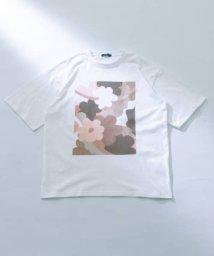 ITEMS URBANRESEARCH/フラワーアートプリント半袖Tシャツ/503315712